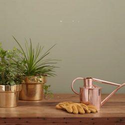 home garden idea